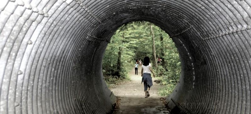 Gatineau Park Explorations