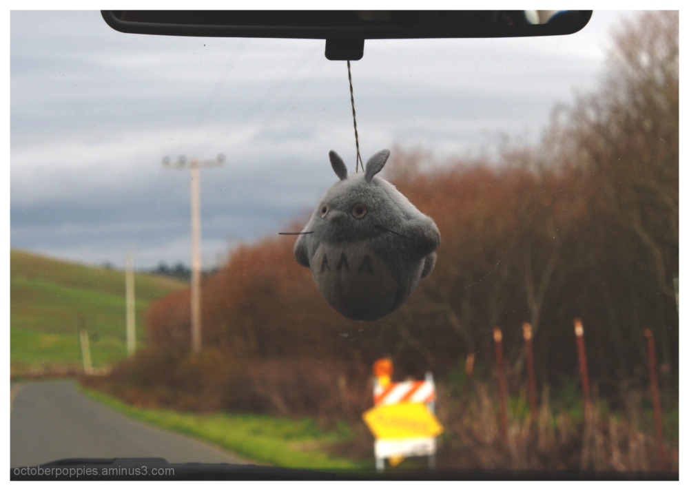 Totoro's drive