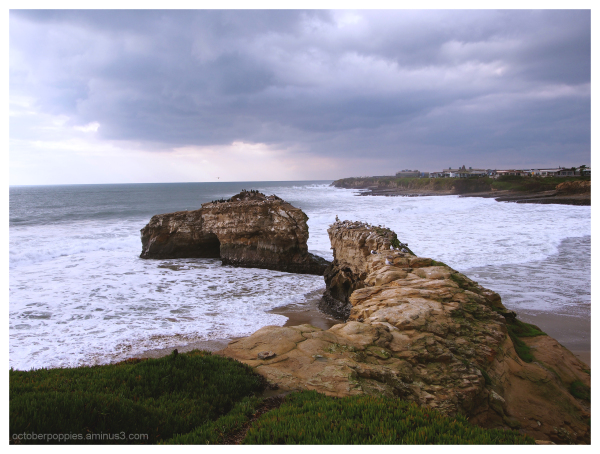 Natural Bridges, 1