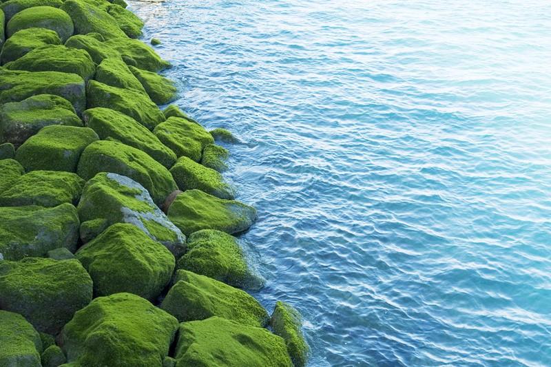 Break water, Jeju Island, Korea
