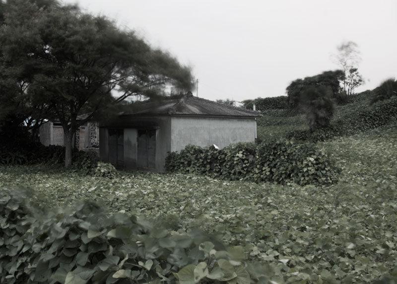 Hallim, Jeju, Korea