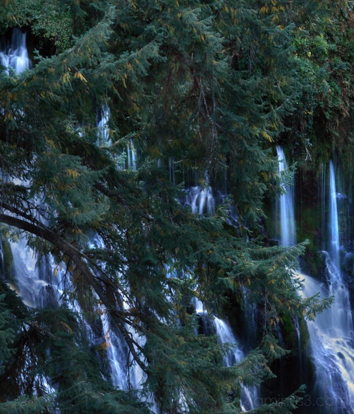 Burney Falls II
