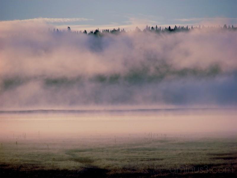 Steam Fog above Lake Almanor