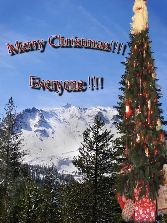 Merry Christmas Everyone ! ! !