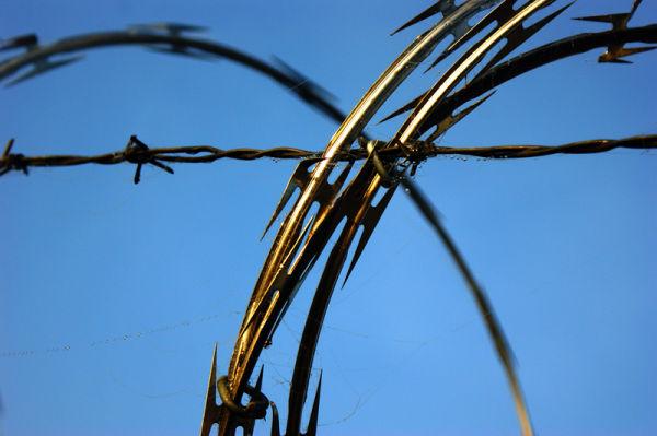 razer wire