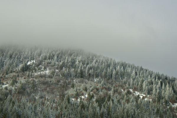 Trinity Alps II