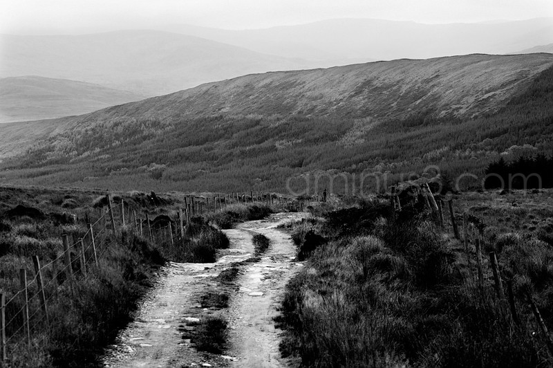 County road in Co. Kerry Ireland