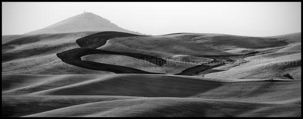 Steptoe Butte from Kamiak Butte