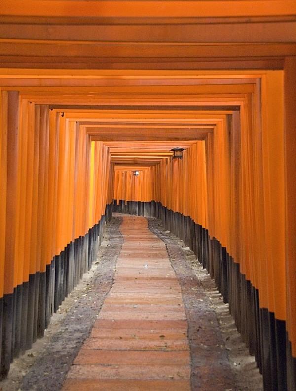 Toriis at Fushimi-Inari Taisha.