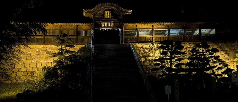 Toshogu Shrine at night.