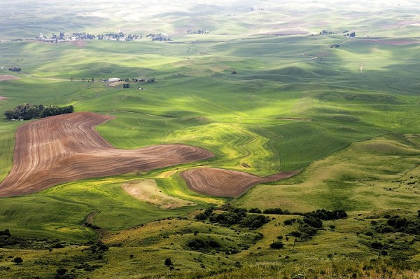 The Palouse.