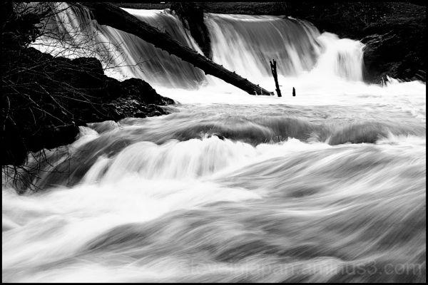 Tumwater Falls in Tumwater, WA.