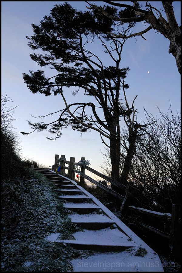 Stairs and moon at Kalaloch beach.
