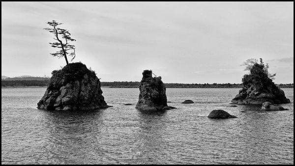 Islets near the mouth of Tillamook Bay.