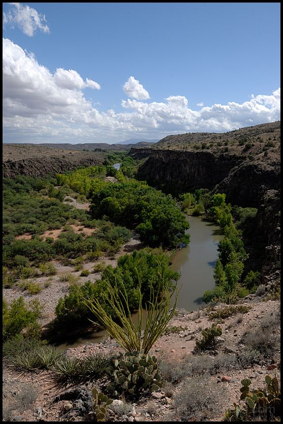 A view of the Verde River.
