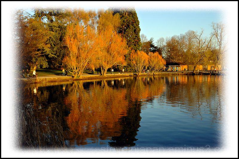 Reflections at Green Lake.