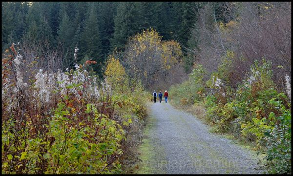Hikers headed to Barlow Pass.