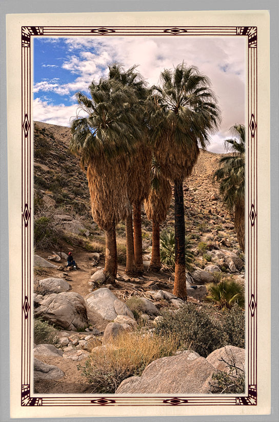 The Fortynine Palms Oasis in Joshua Tree NP.