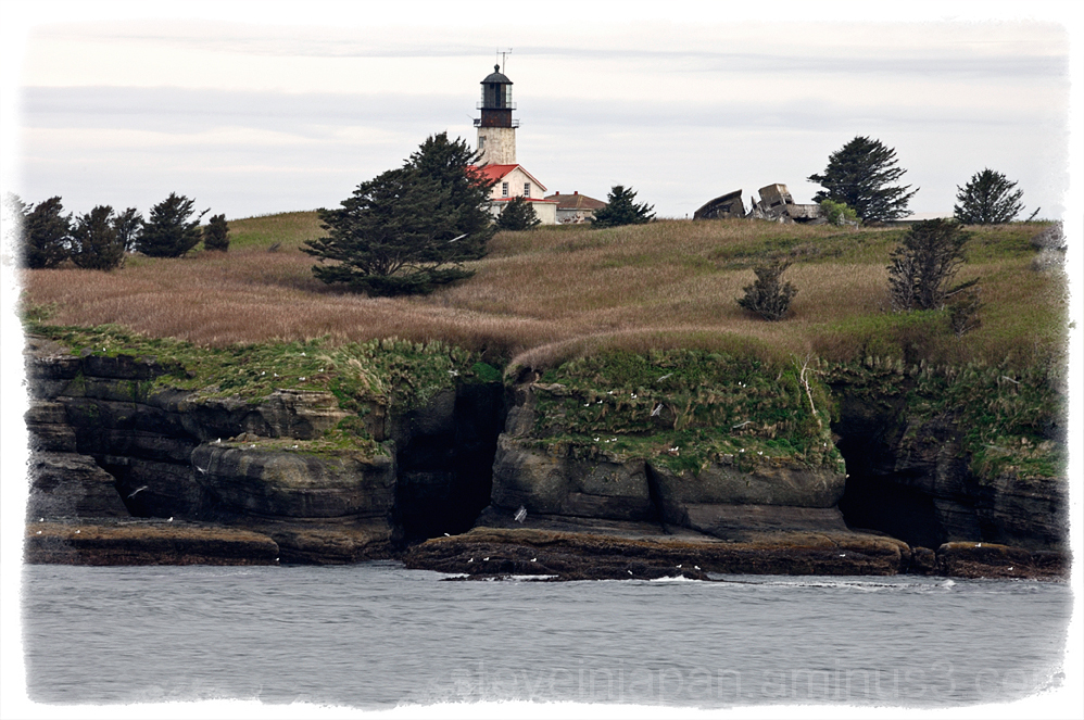 The Cape Flattery lighthouse on Tatoosh Island.