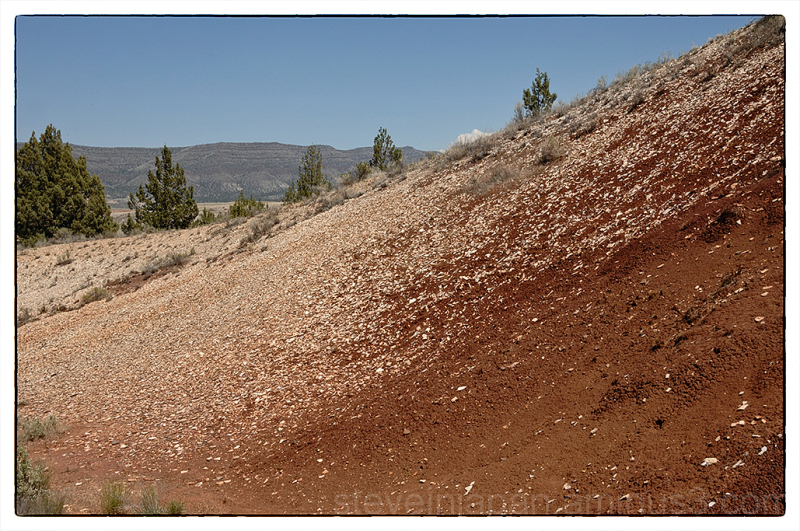 Fossils in the Painted Hills in Oregon.