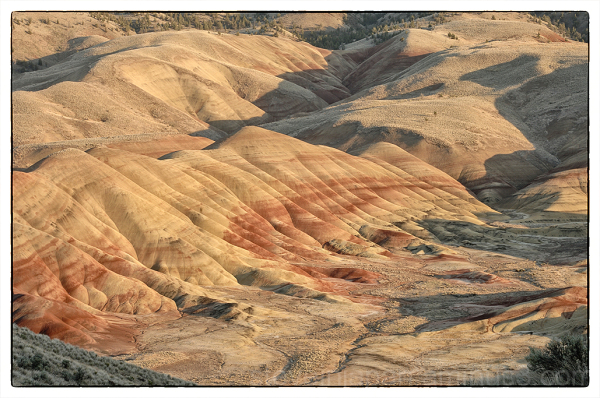 The Painted Hills from Carroll Rim.