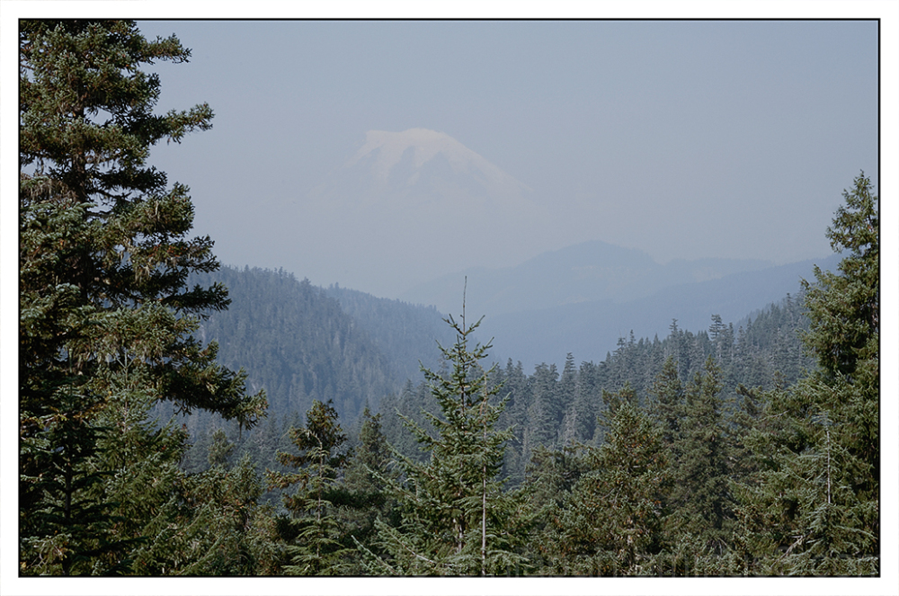 Mount Rainier from the west side of White Pass.