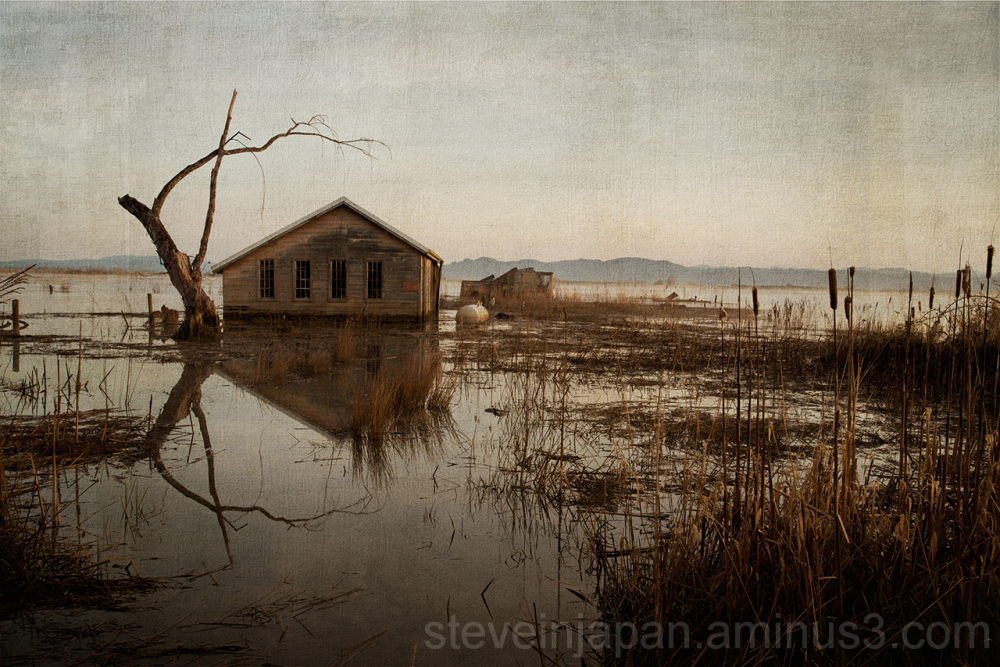 An old garage near Astoria, OR in a Drowned World.