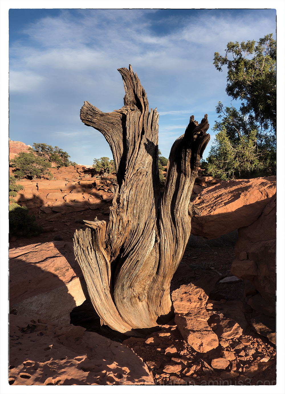 The natural sculpture in Capitol Reef NP.