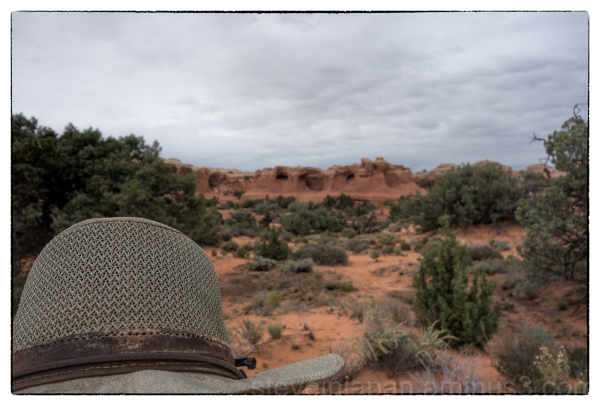 A selfie with Tapestry Arch in Arches NP.