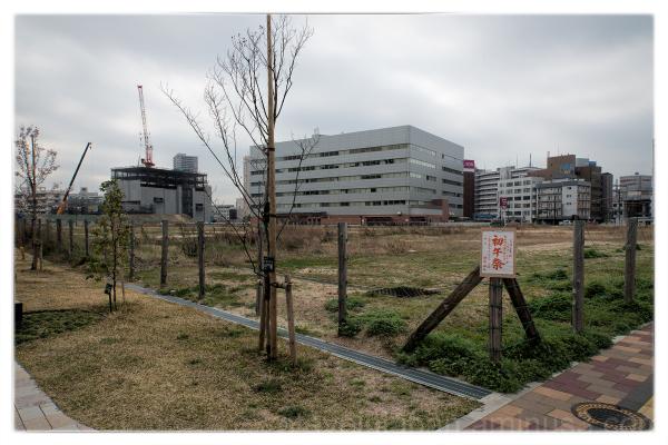 New buildings north of Hiroshima Station.
