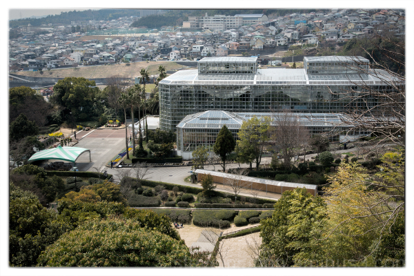 The greenhouse at the Hiroshima Botanical Garden.