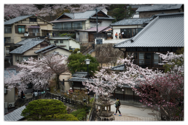 A quiet neighborhood near Senjo-kaku.