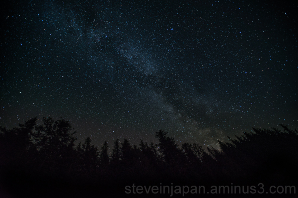 The Milky Way above the forest at Mt. Rainier.