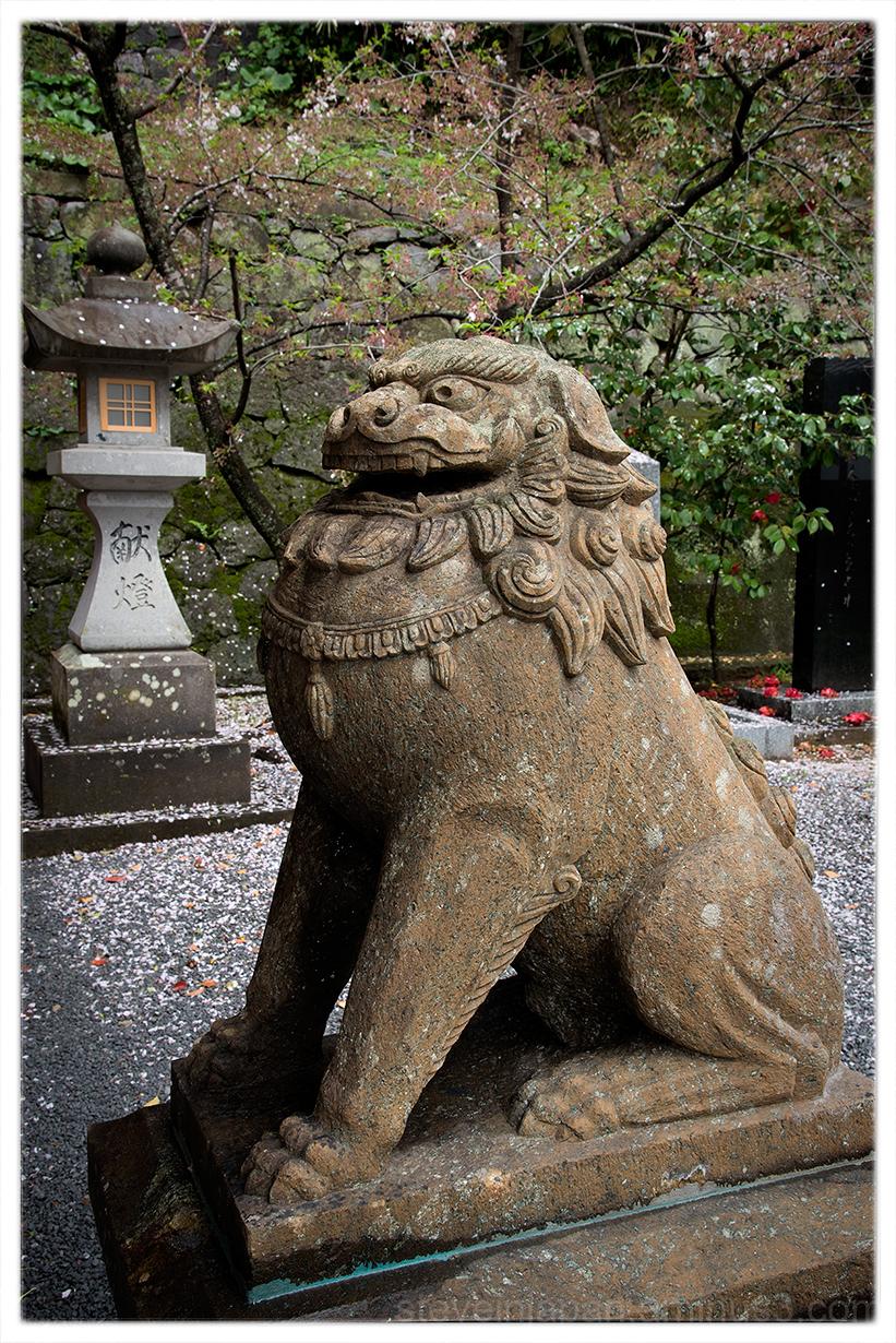 A komainu at Suwa Shrine in Nagasaki, Japan.