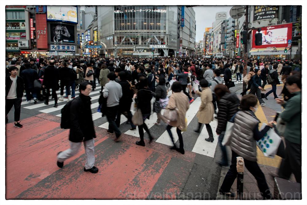 Shibuya Crossing in the evening.