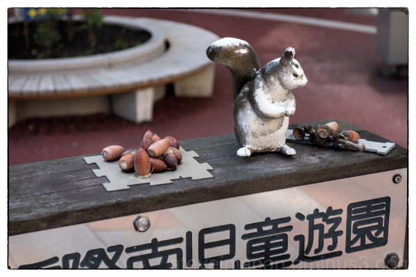 A squirrel and nuts in a tiny park in Tokyo.