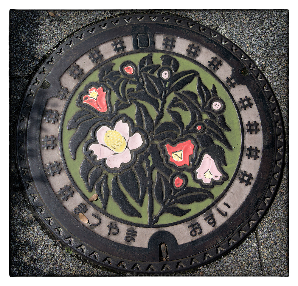 A manhole cover on the way to Ishite-ji.