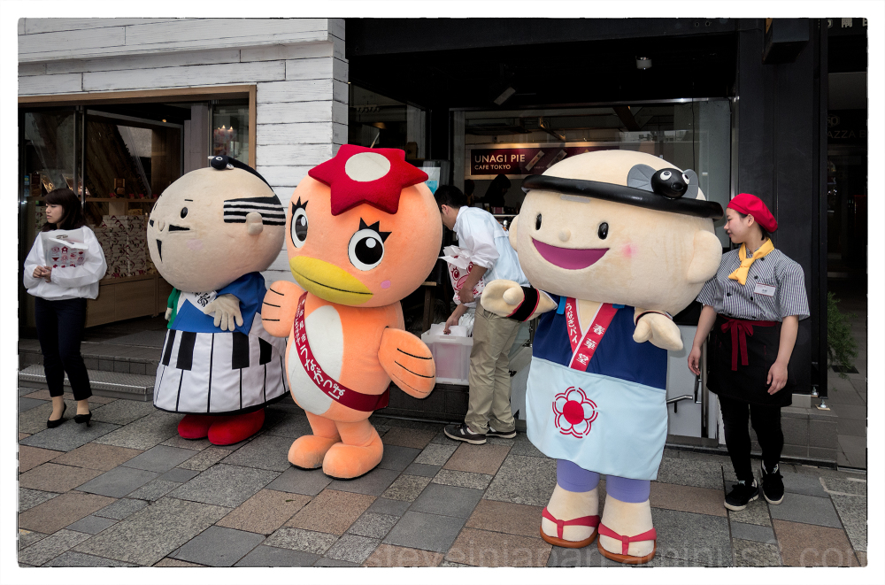 The Unagi Pie Cafe in Tokyo, Japan.