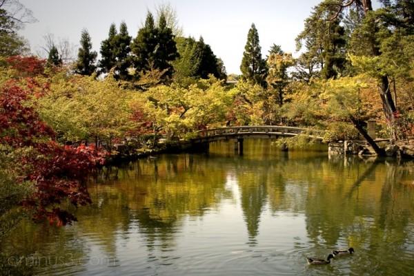 Hojo Pond - Eikando Zenrin-ji Temple