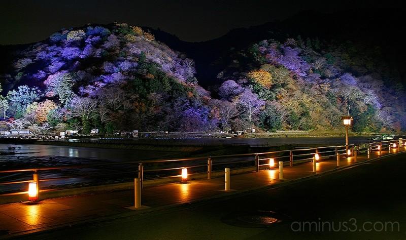 Arashiyama 1/3