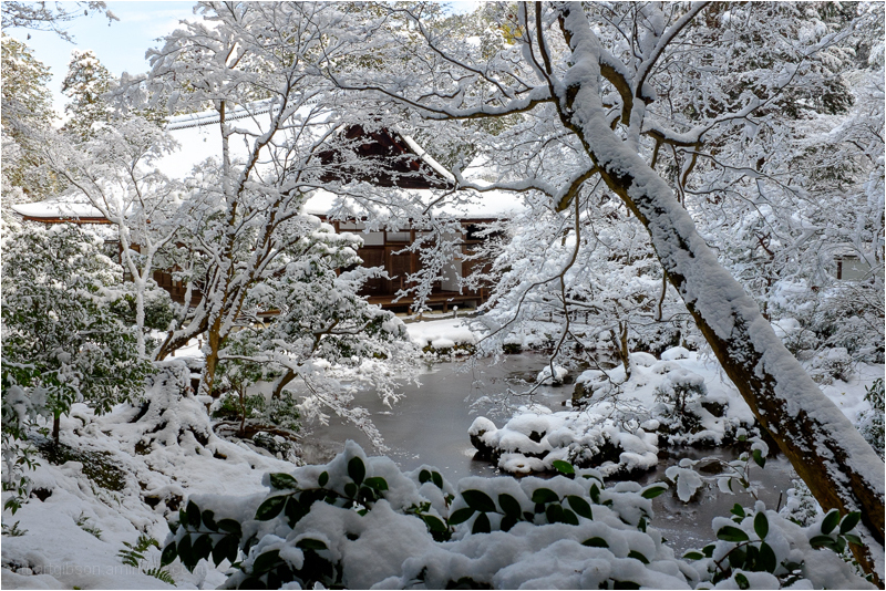 Powder snow at Nanzenin, 南禅院