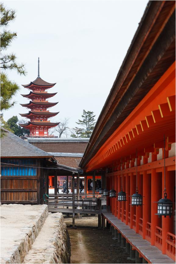 at Itsukushima Shrine
