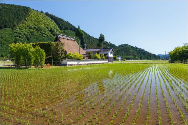 rural Kyoto