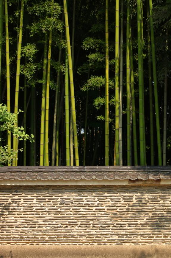 at daitokuji temple - 大徳寺