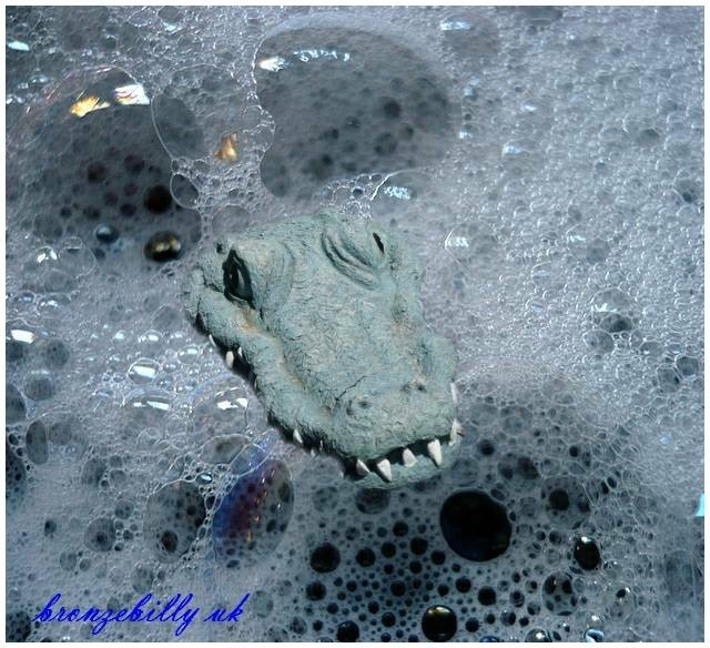 water crocodile