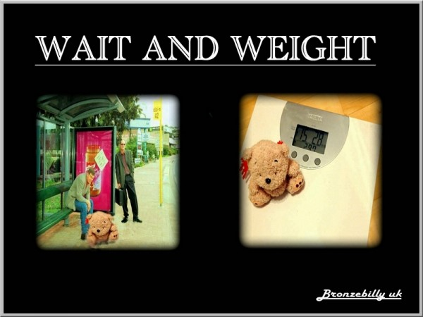 weight teddybear heavy
