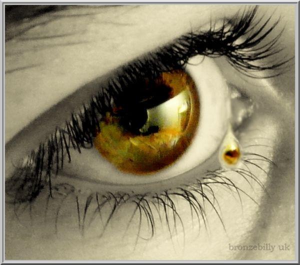 tear eye bronzebilly