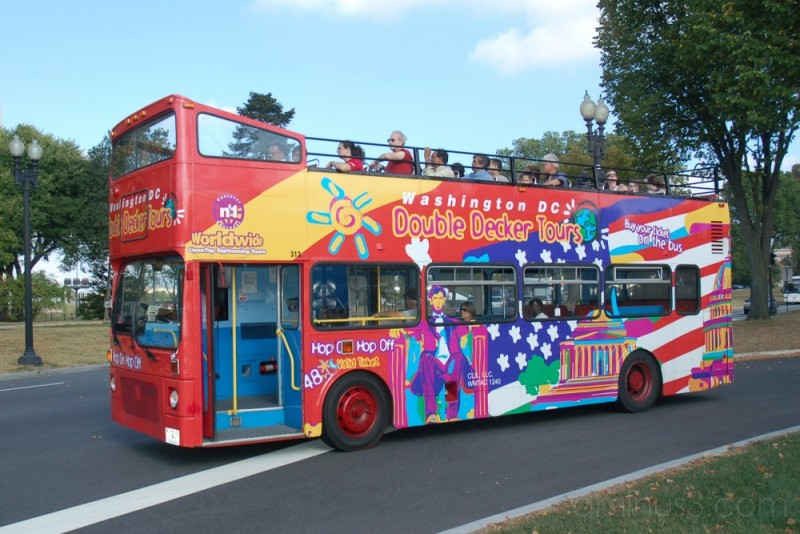Another Sightseeing Bus