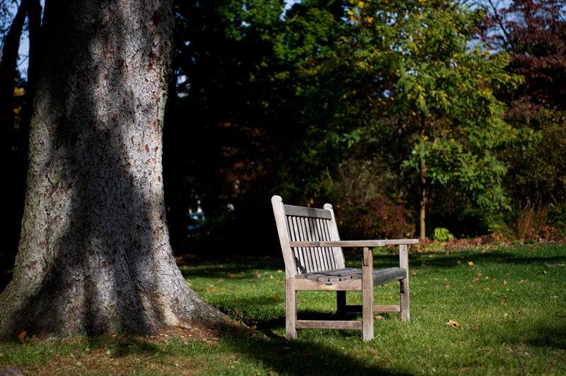 Breuer Hill garden bench
