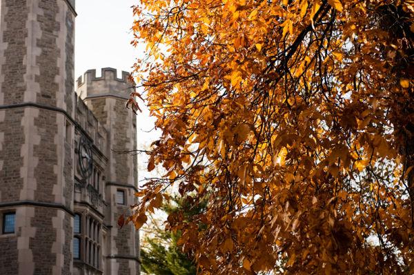 Fall colors at Princeton